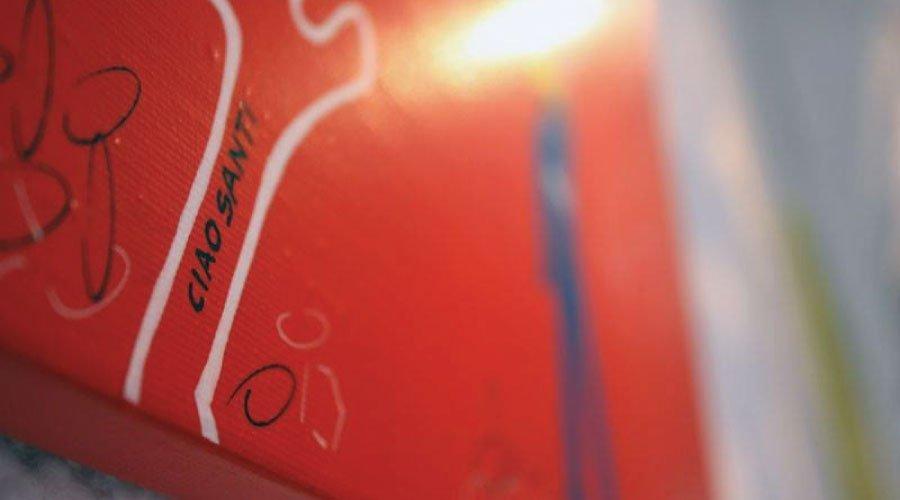 ginko-rosa-dragonetti+santiflores_4